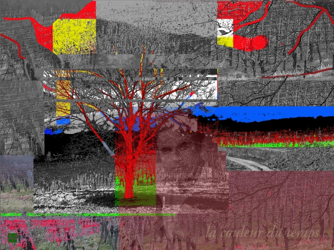 pulversheim, patrick andres, alsace, vosges, image
